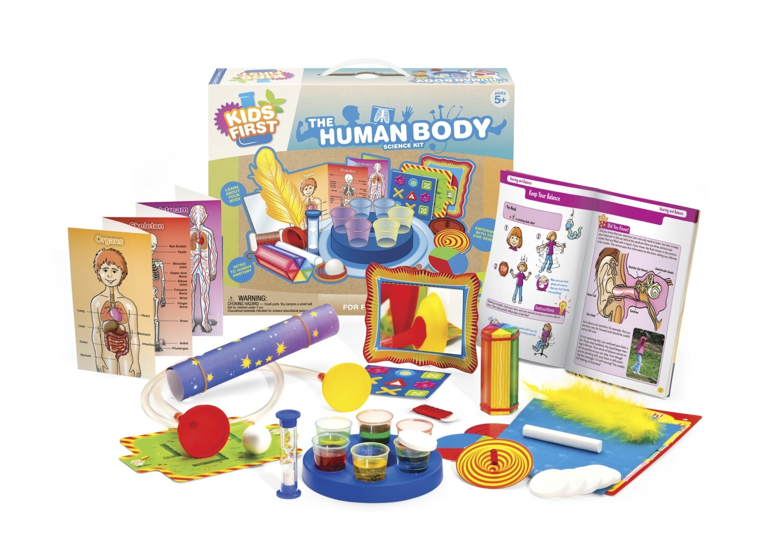 Learning: Science Biology Human Organ Models Human Torso Models - 1539110 - Thames And Kosmos Kids First The Human Body Kit 1539110