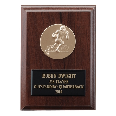 4-1/4 X 6 Inch Plaque With Black Plate Takes Insert - Ps8g - Trophies And Awards Academic Award Plaques PS8G