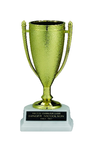 Gold Cup Trophy; 6-1/2 Inch; White Marble Base - Tr7288 - New Academic Awards And Trophies TR7288